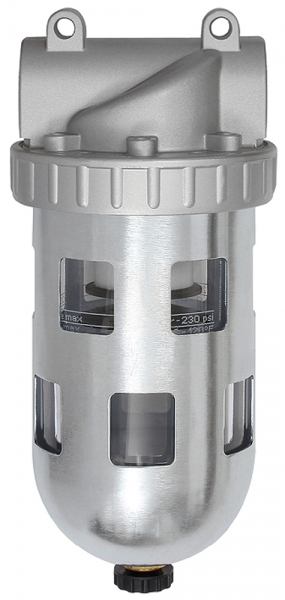 Filter »Standard«, PC-Behälter und Schutzkorb, 5 µm, BG 1, G 1/4